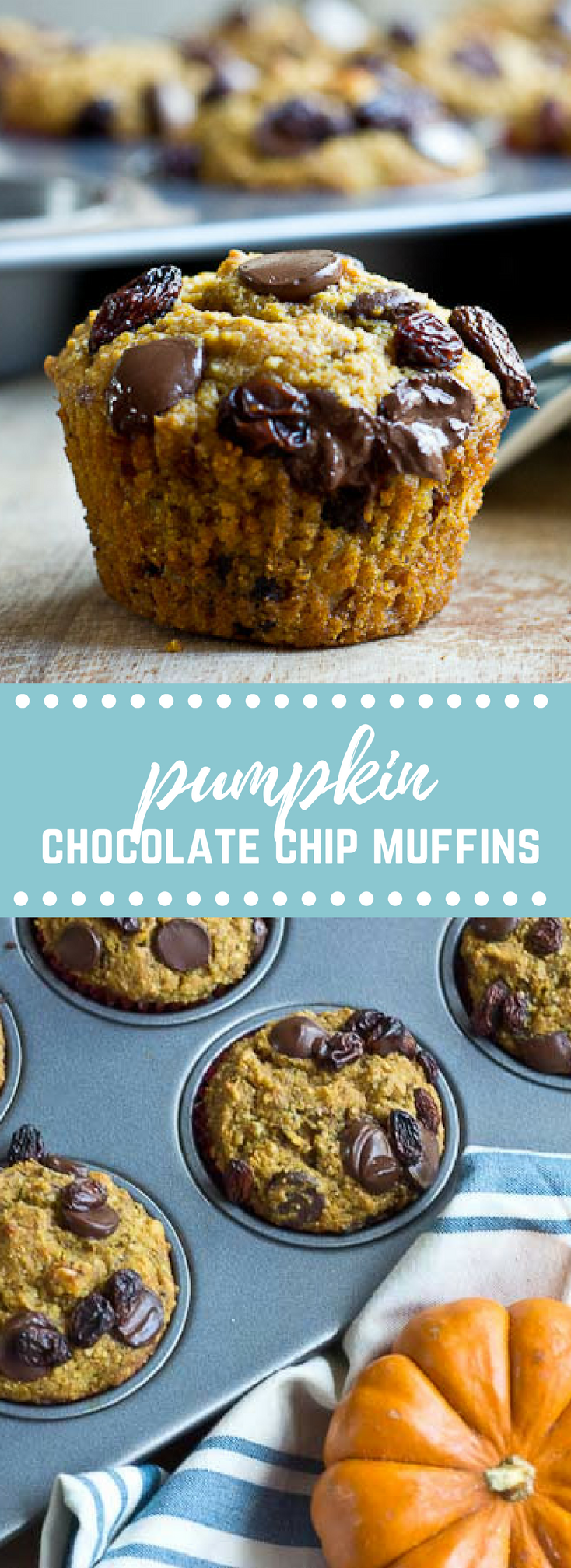 Pumpkin Chocolate Chip Lactation Muffins | Love & Zest
