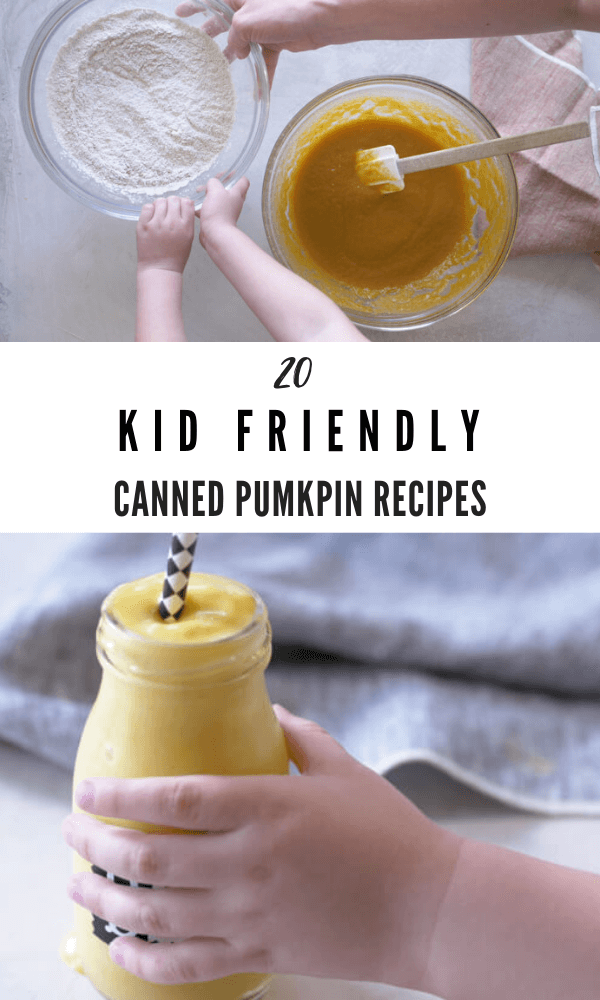 kid friendly canned pumpkin recipes