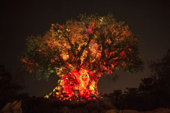 Awaken Summer Tree of Life