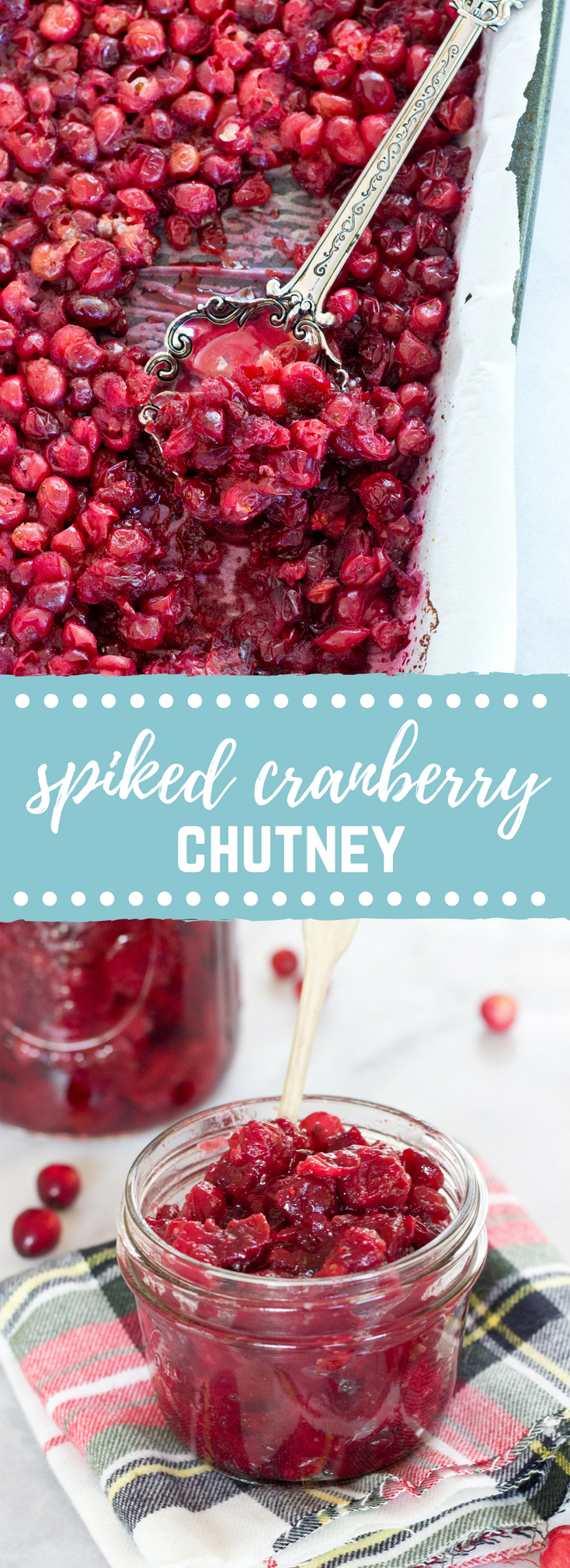 This Spiked Cranberry Chutney not only smells amazing while it's cooking, it's so freaking good. Fresh cranberries, cinnamon, cloves and aged rum... the perfect topping for everything holiday!