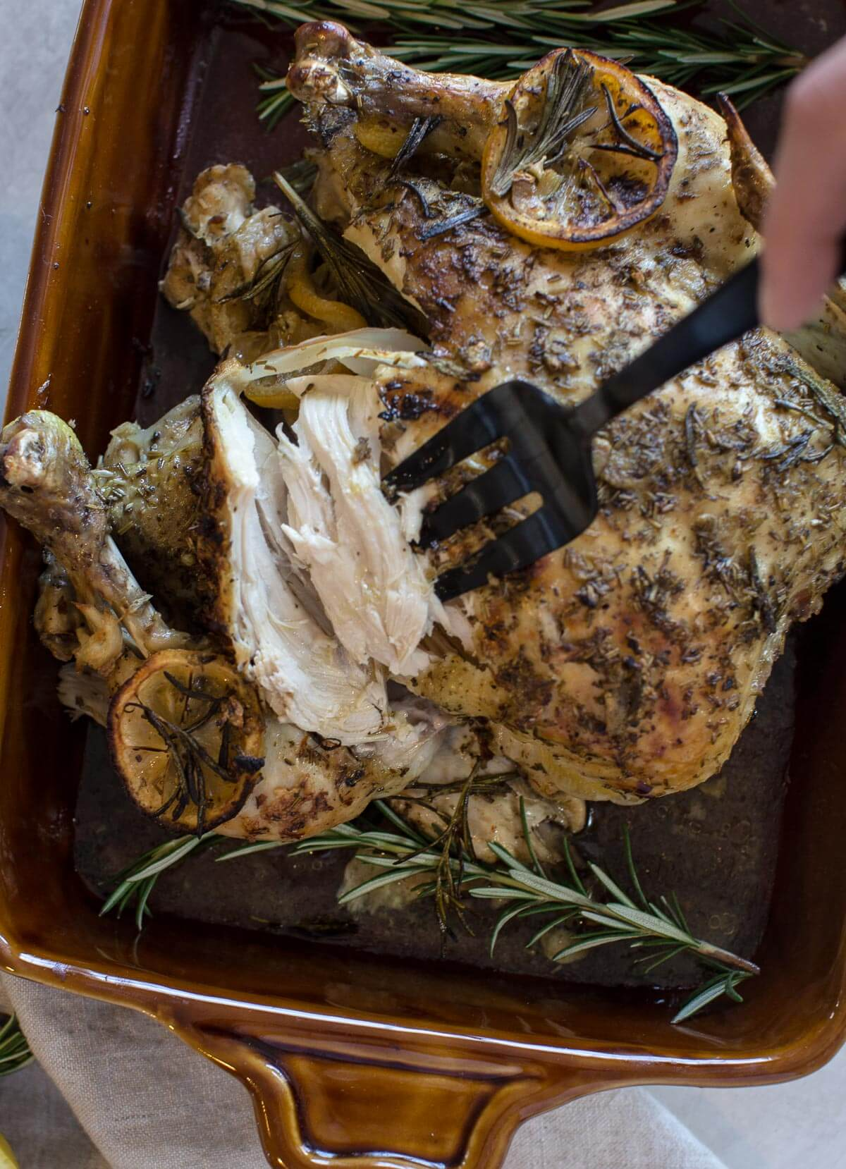 close up shot of fork pulling white meat from cooked whole chicken with fresh herbs and lemon